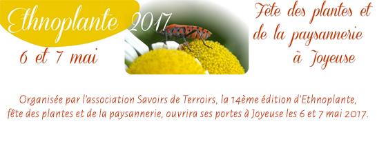 Ethnoplante, fête des plantes et la paysannerie.