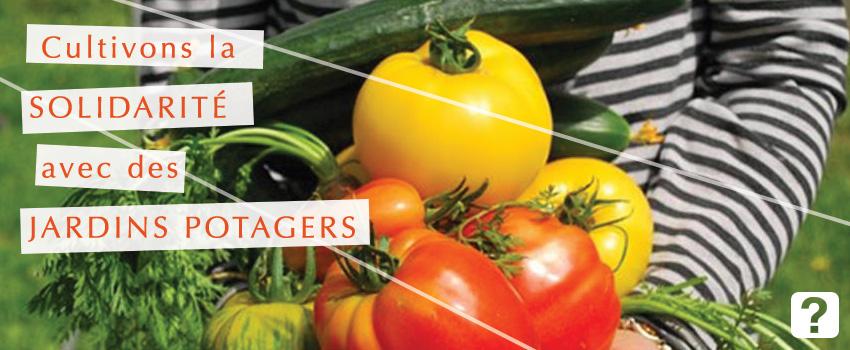 Cultivons la solidarité avec des jardins potagers