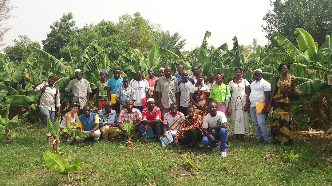 Un processus pour évaluer la diffusion de l'agroécologie en Afrique de l'Ouest