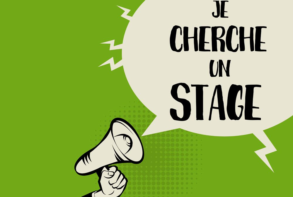 Offre de stage Marketing/commercial